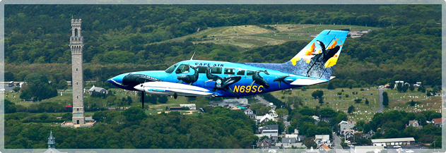 International Fund for Animal Welfare, Cape Air's Art in Flight over Provincetown